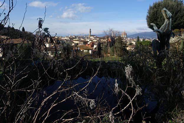 florenze view
